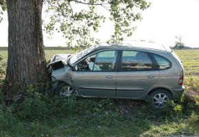 Pijana 23-latka przewoziła autem dwoje dzieci. Jazda zakończyła się na drzewie-23567