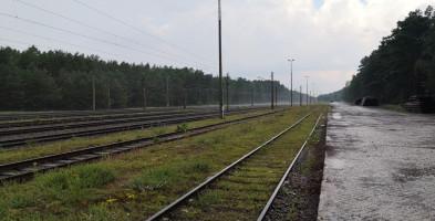 Do spółki Terminal Intermodalny Bydgoszcz Emilianowo dołącza BPPT-24481
