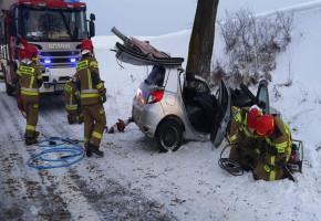 Wpadł w poślizg i uderzył w drzewo. Na pomoc ruszyli strażacy i pogotowie-24825