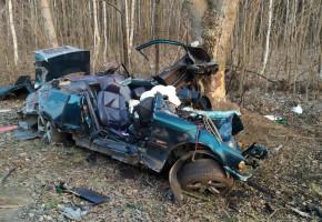 2 ofiary śmiertelne po uderzeniu BMW w drzewo. Z auta zostały szczątki-25249