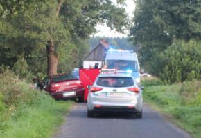 Zjechała z drogi i uderzyła w drzewo-26686