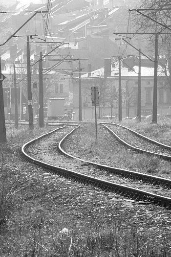 Życie w ukryciu. Zdjęcia Krzysztofa Szymoniaka-9091